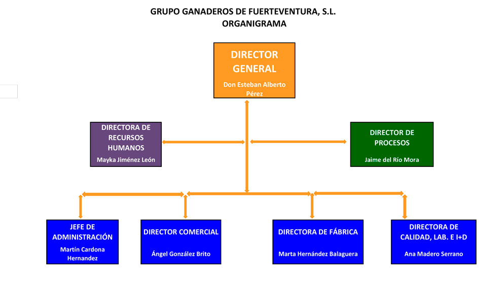 organigrama empresa